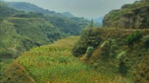 Lush plateau china5