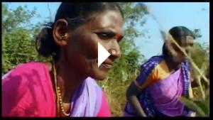 Video: Moeder Aarde: een toekomst voor kleine boeren
