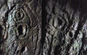 vulvasinrock2