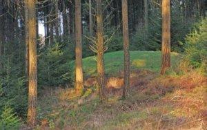 [B4A] Eén van drie andere grafheuvels bij de Elsterberg en Galgenberg achter Bosweg 47. Foto Cees Verkroost A