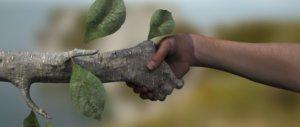 Genesis en het milieu